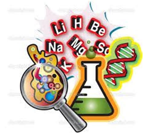 Immunology essays